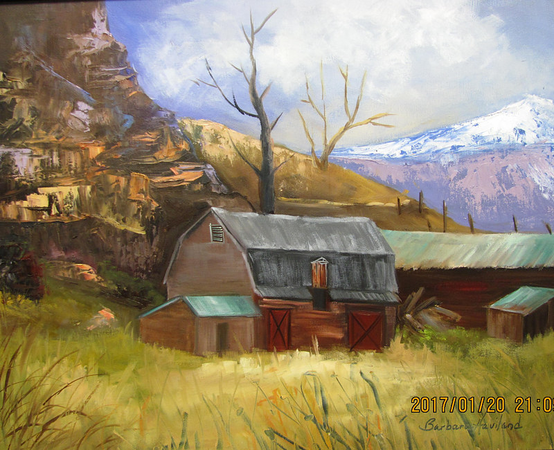 Oil painting Belleview Barn,oils on canvas, Barbara Haviland by Barbara Haviland