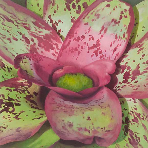 Oil painting Roseate by Laurie Flaherty