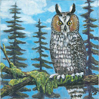 Print C-150 LONG-EARED OWL by Cody Blomberg