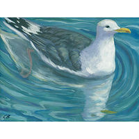 Print C-159 SEAGULL by Cody Blomberg