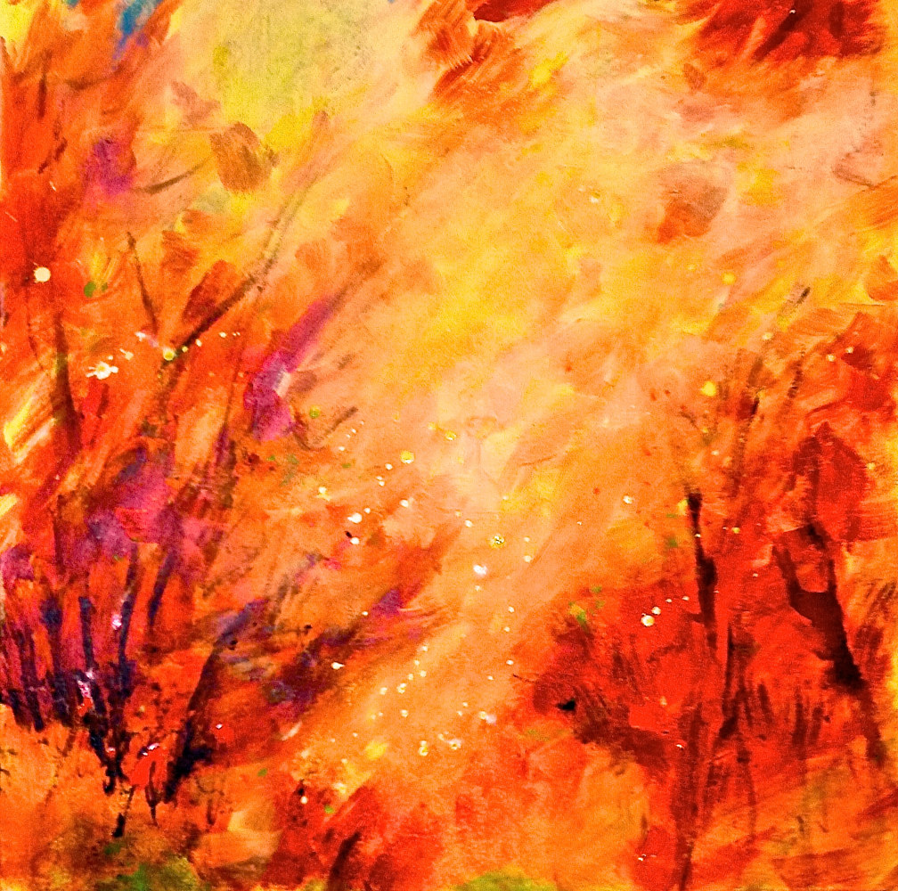 Ablaze by Laura Spring