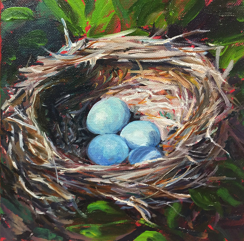 Oil painting Birds Nest by Betty Ann  Medeiros