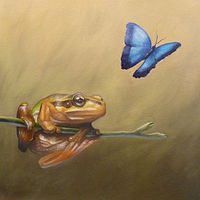 Frog_12x12 by Adam Thomas