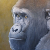 Thoughtful_16x20 by Adam Thomas