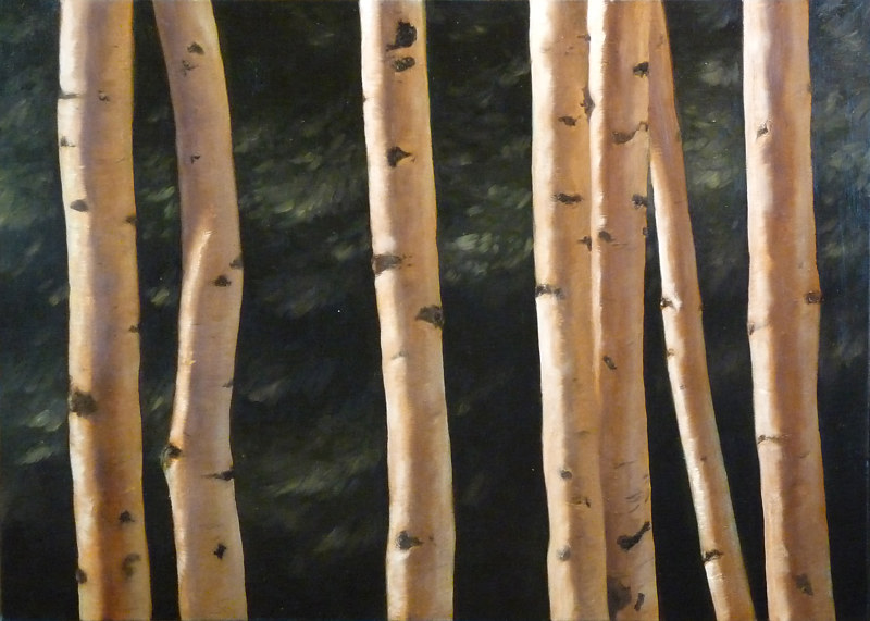 Birch_20x30  by Adam Thomas