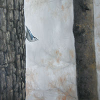 Nuthatch_18x24 by Adam Thomas
