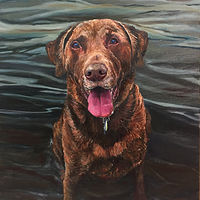 Oil painting Dog portrait commission by Betty Ann  Medeiros