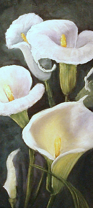 Oil painting resized Calla Lilies by Barbara Haviland