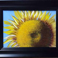 Acrylic painting A Sunflower by George Servais