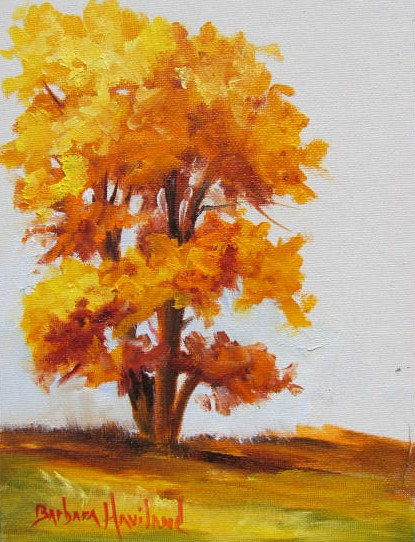 Oil painting Cottonwood Tree Study, oils on canvas by Barbara Haviland
