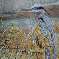 Watercolor The Heron Stance by Vicki Allesia