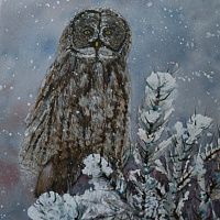 Watercolor Wintering Grey Owl by Vicki Allesia