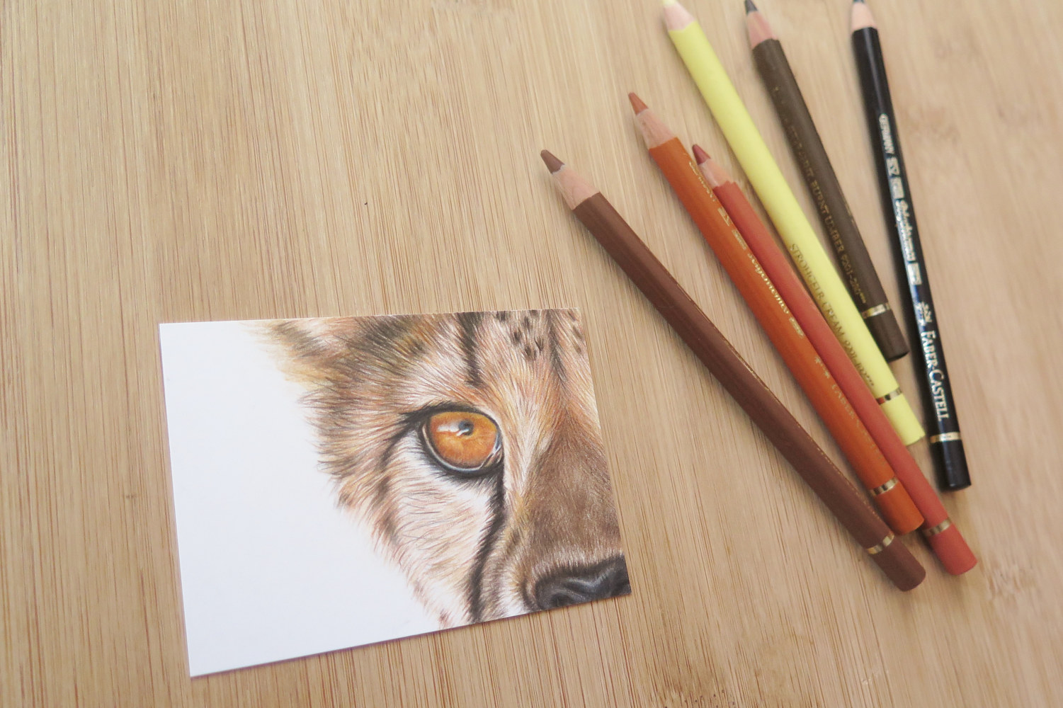 Dessin miniature ACEO - Guépard by Genevieve Desy