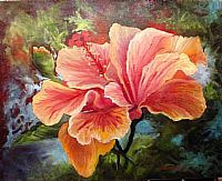 Oil painting Peach-HIbiscus- by Barbara Haviland
