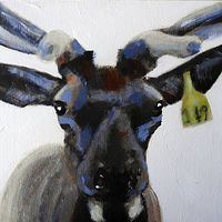 Acrylic painting WAPITI#5 by Edith dora Rey