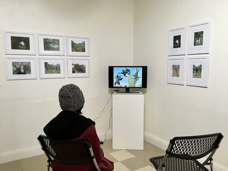 Installation view: Transient #1 & #2 + two digital media narrarives by Judy Southerland
