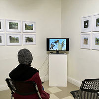 Installation view: Transient #1 & #2 + 2 digital media narrarives by Judy Southerland
