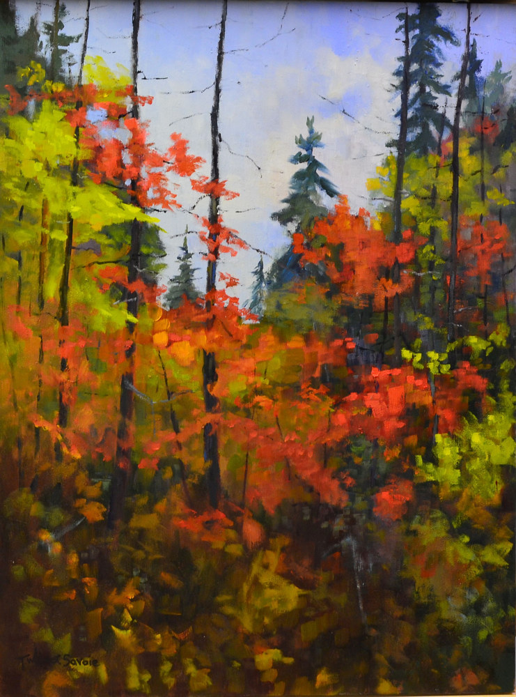 Scattered Colours - At Algonquin Park; 24 x 18, oil on cradled wood, 25-16 by Patricia Savoie