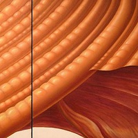 Oil painting Sienna Spiral diptych by Sue Ellen Brown