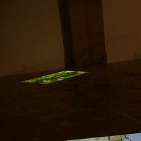 Floor + Wall Projections by M. Simon Levin
