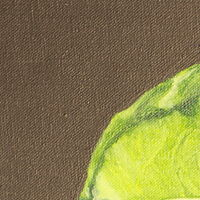 Oil painting Cabbage by Jill  Tompkins