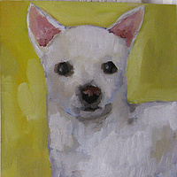 Oil painting skippy by Cody Blomberg