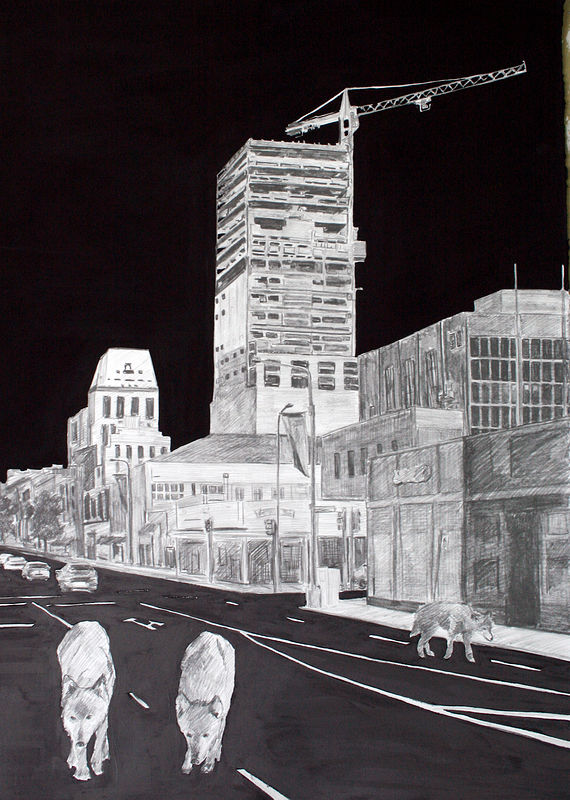 """Manchester"" 2008. Graphite and gesso on paper. 70 x 50 cm by Belinda Harrow"