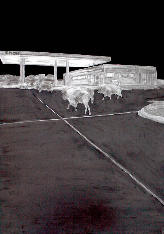 """Riccarton"" 2008. Graphite and gesso on paper. 70 x 50 cm by Belinda Harrow"
