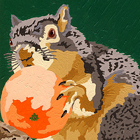 Acrylic painting A Squirrel Eating An Orange by Phil Cummings