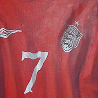 Painting Locker Room Mural - Soccer Jersey - Detail View by Cindy Scaife