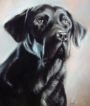 Black Lab by Noah Verrier