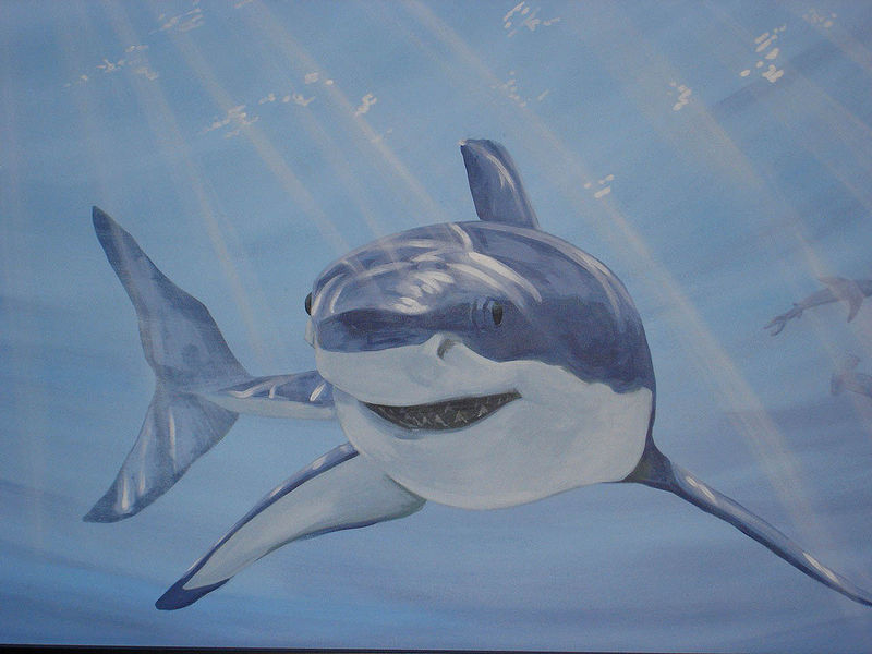 Painting Shark Mural - Detail Image by Cindy Scaife