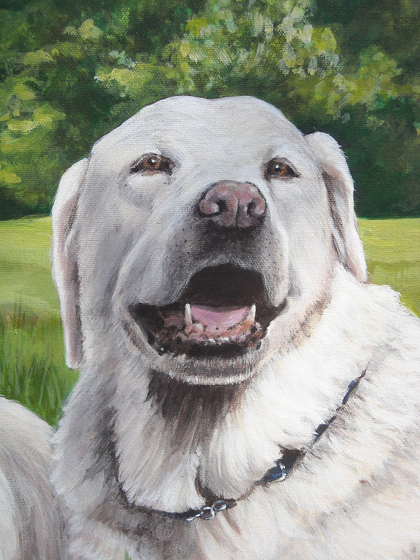 Acrylic painting Dog Painting - Right Side Detail by Cindy Scaife