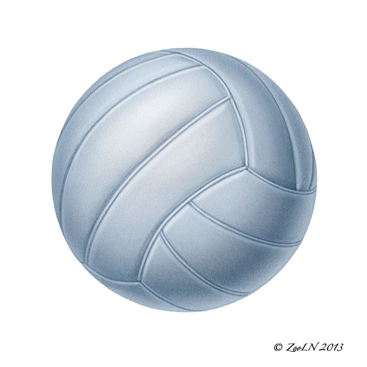 Print Volleyball by Sue Ellen Brown