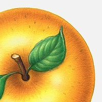 Print Apple Gold by Sue Ellen Brown