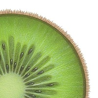 Print Kiwi by Sue Ellen Brown