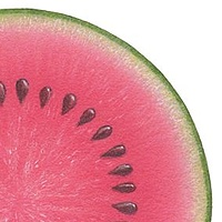 Print Watermelon by Sue Ellen Brown