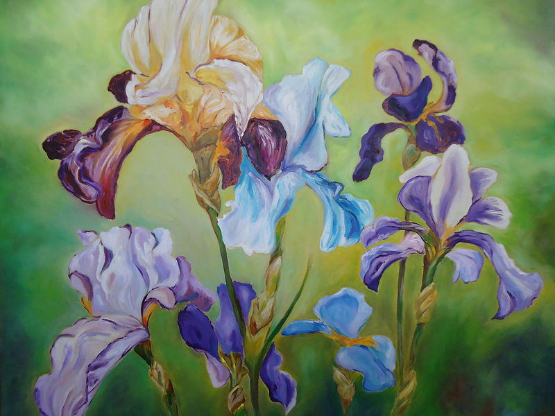 Oil painting Irises in my garden by Michelle Marcotte
