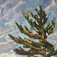 Oil painting Ann's Young Pine by Edward Miller
