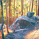 Oil painting Sunny Bush Rocks by Guntis Jansons