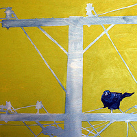Acrylic painting Telephone Line Green Grackle by Belinda Harrow
