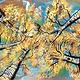 Abstract Aspens XV  by Isaac Carpenter