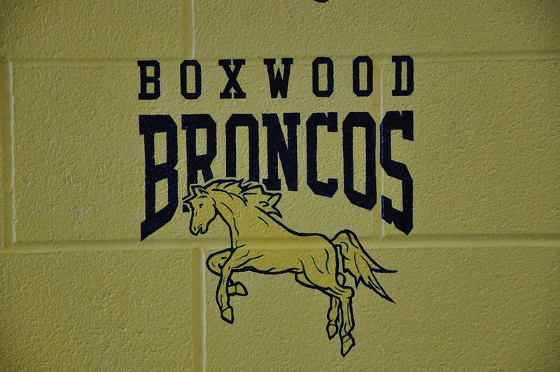Painting Boxwood P.S. Touchstone - Detail of hand painted lettering - School Logo by Cindy Scaife