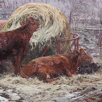Oil painting Cow Belles and Babes by Susette Gertsch