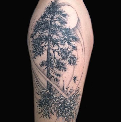 A tattoo of a tree and pinecones in black and white ink