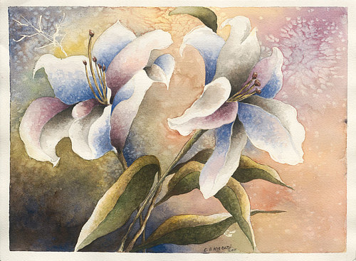 A painting of two large white blooms