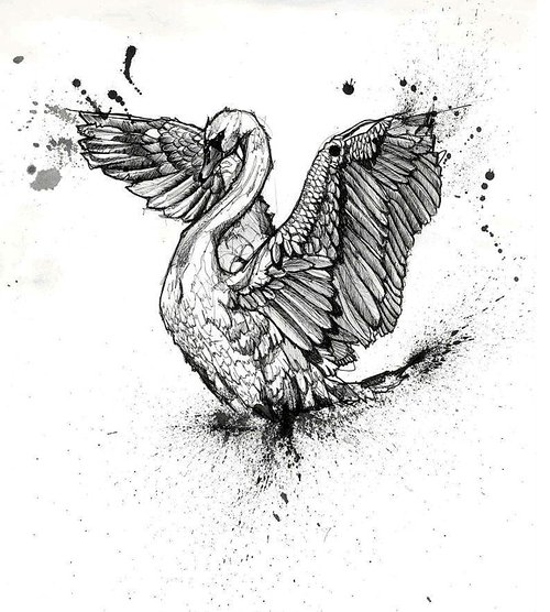 Ink drawing of a swan with ink blots