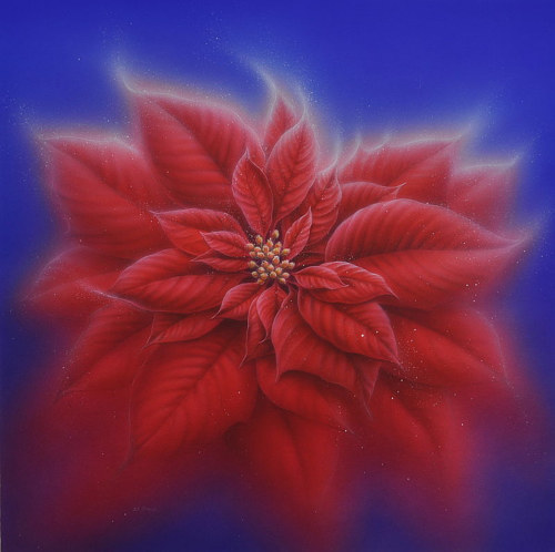 A drawing of a poinsettia flower on a blue background