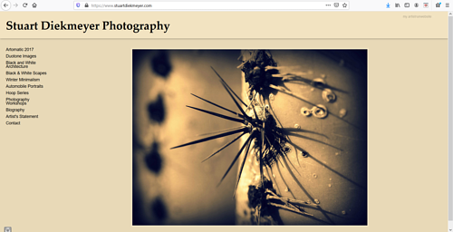A screen capture of Stuart Diekmeyer's art portfolio website