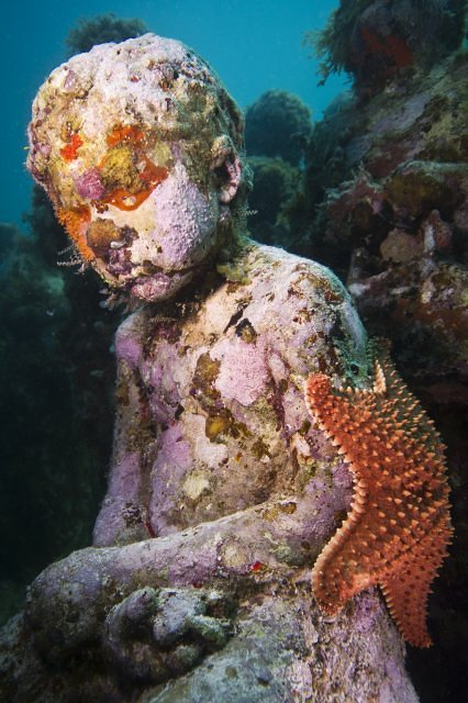 underwater sculpture with a starfish attached to it